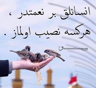 İnsanlık nimet